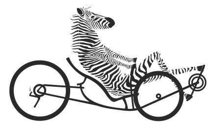 Zebra on a Bike